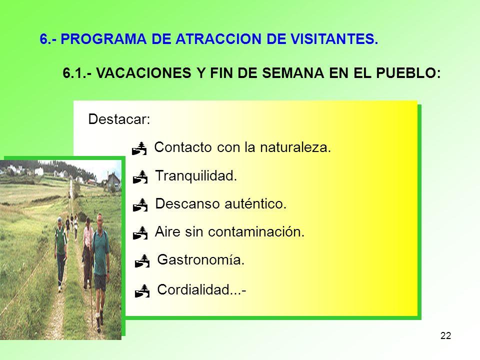 6.- PROGRAMA DE ATRACCION DE VISITANTES.
