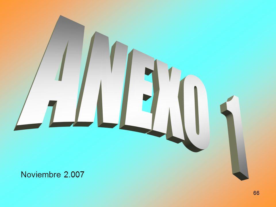 ANEXO 1 Noviembre 2.007