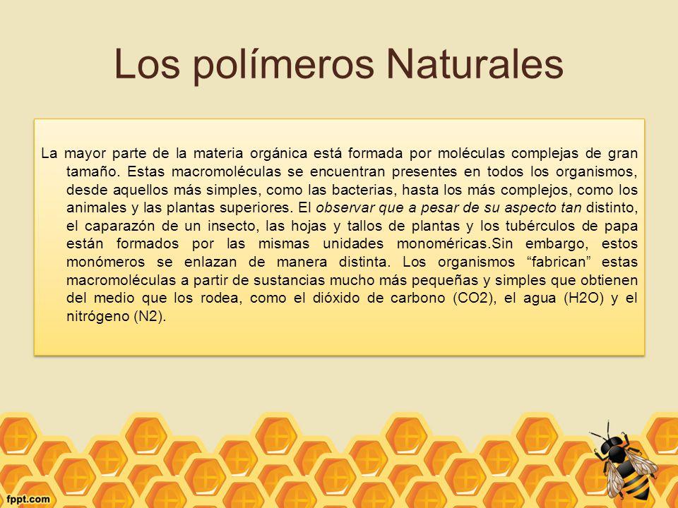 Los polímeros Naturales