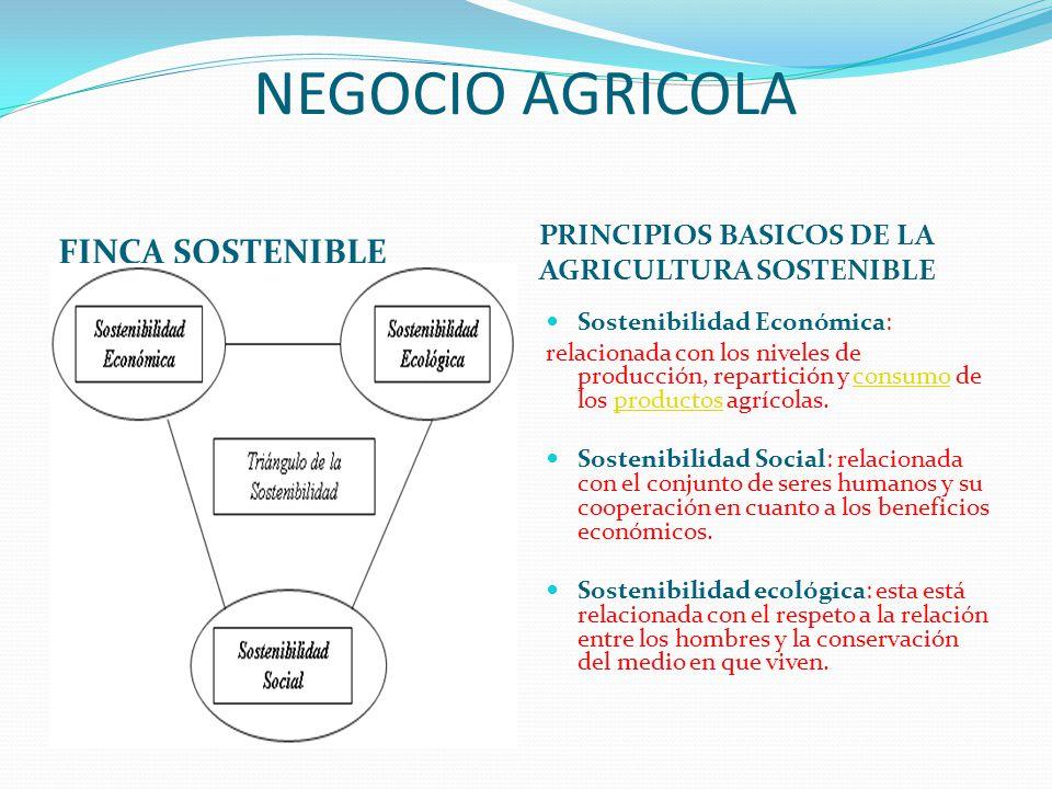 NEGOCIO AGRICOLA FINCA SOSTENIBLE