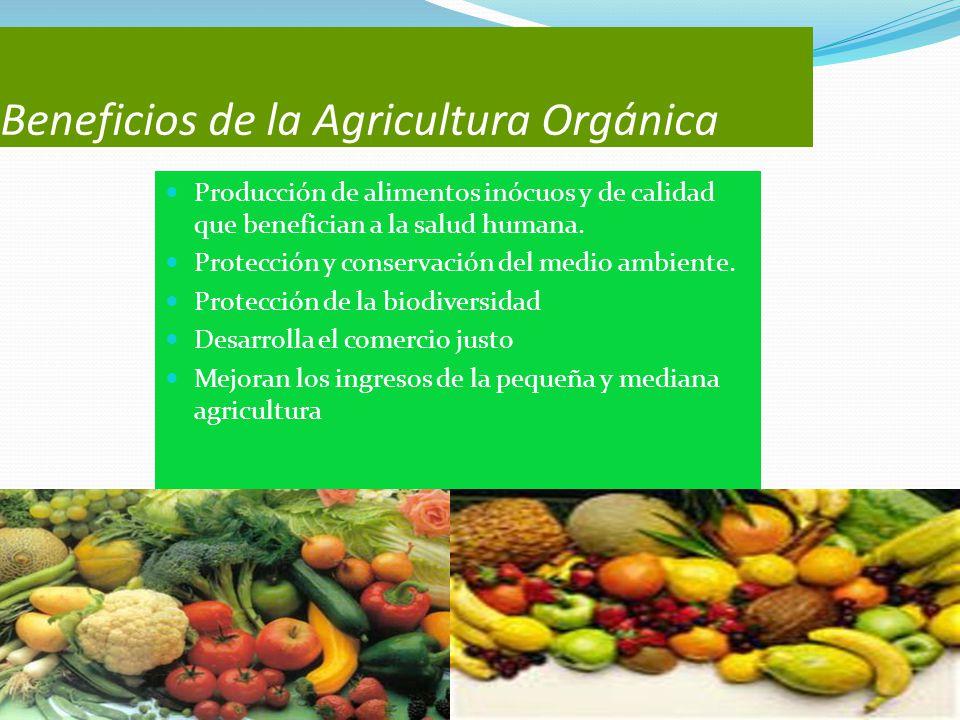 Beneficios de la Agricultura Orgánica