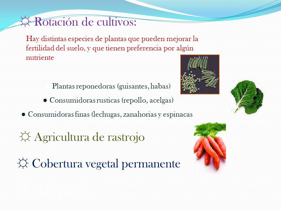 ☼ Rotación de cultivos: