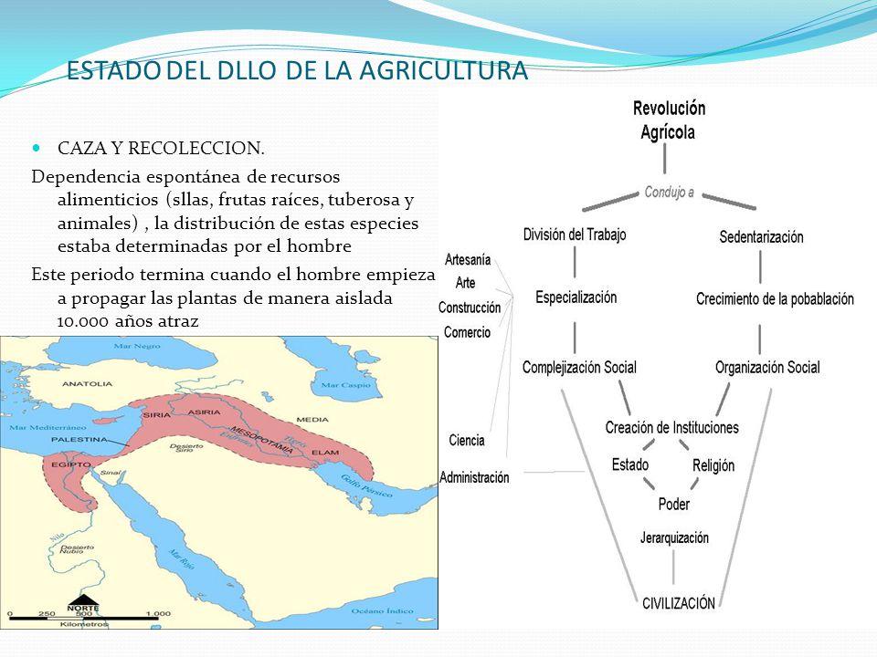 ESTADO DEL DLLO DE LA AGRICULTURA