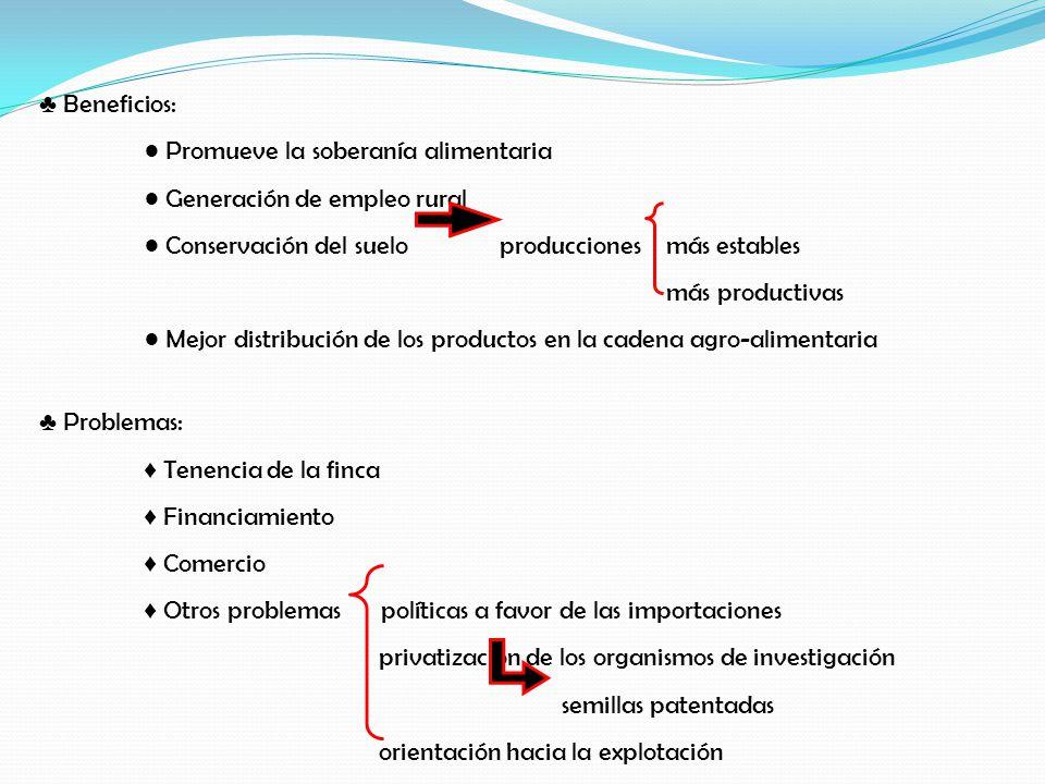 ♣ Beneficios: ● Promueve la soberanía alimentaria. ● Generación de empleo rural. ● Conservación del suelo producciones más estables.