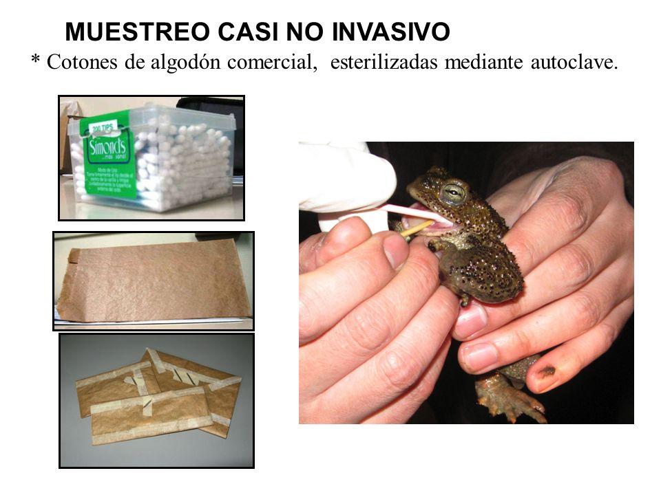 MUESTREO CASI NO INVASIVO