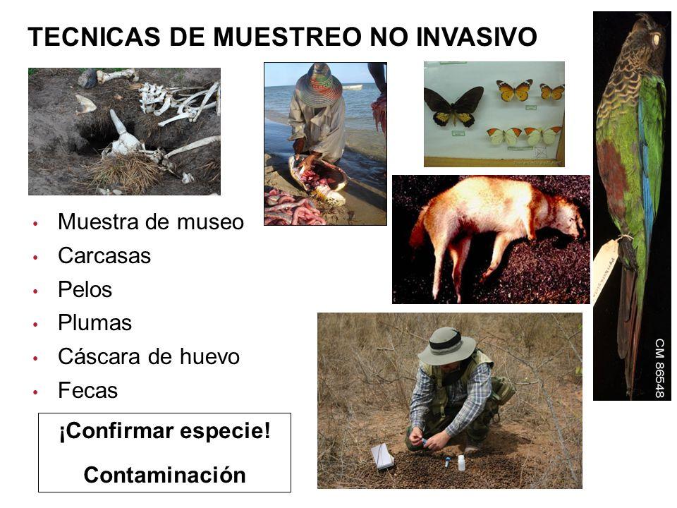 TECNICAS DE MUESTREO NO INVASIVO
