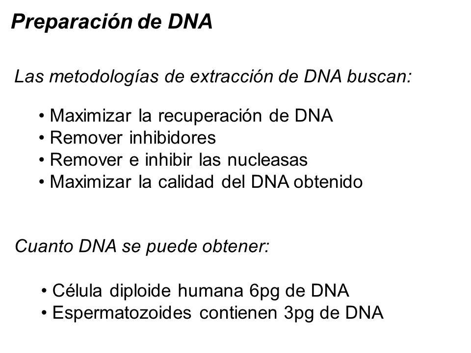 Preparación de DNA Las metodologías de extracción de DNA buscan: