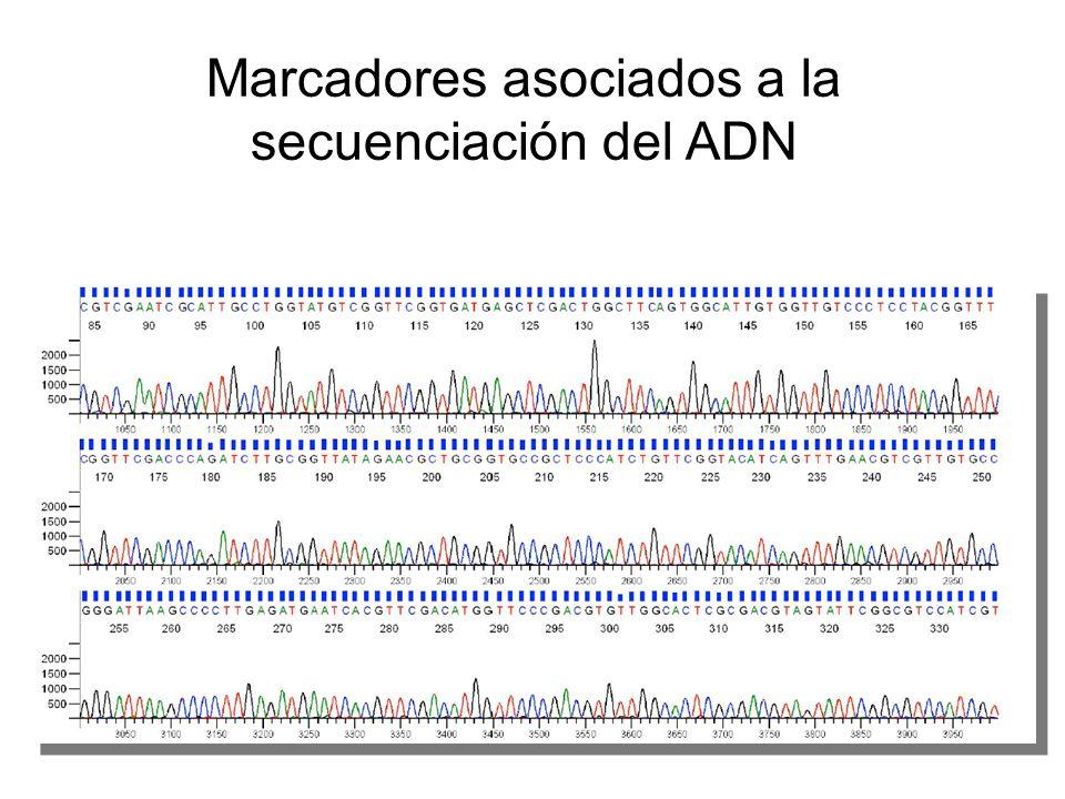 Marcadores asociados a la secuenciación del ADN