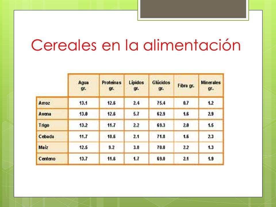 Cereales en la alimentación