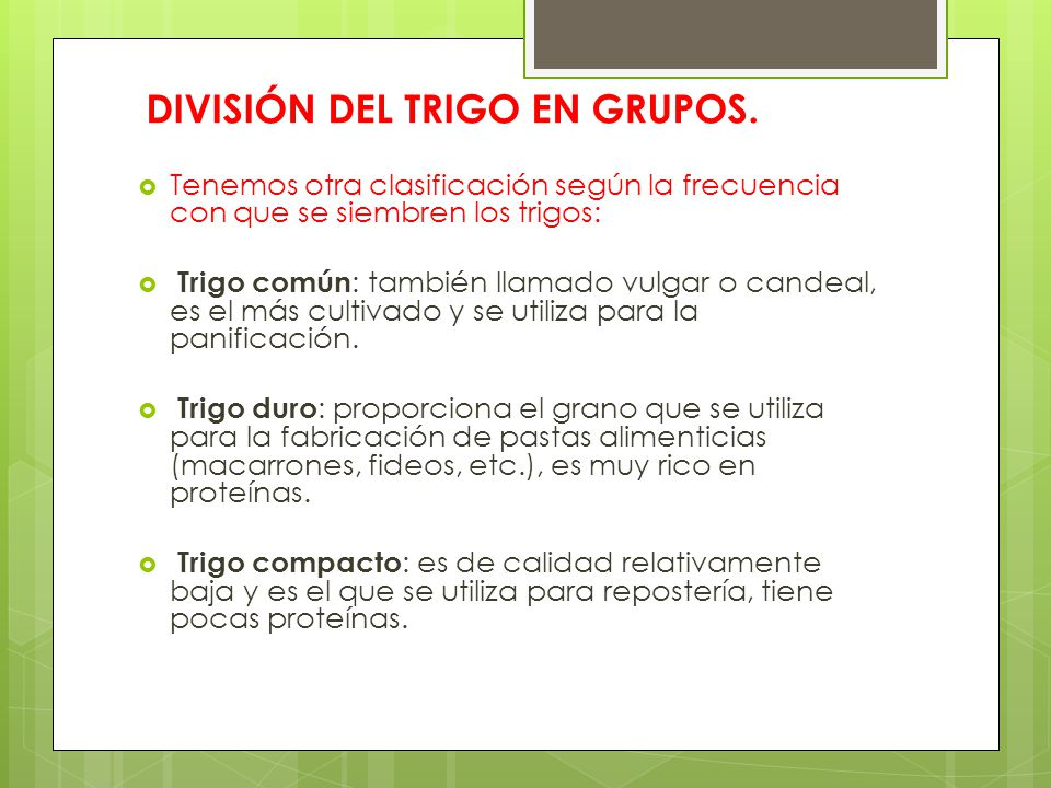DIVISIÓN DEL TRIGO EN GRUPOS.