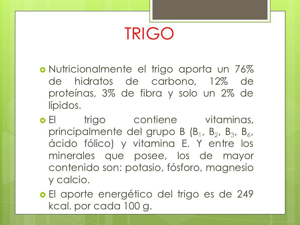 TRIGO Nutricionalmente el trigo aporta un 76% de hidratos de carbono, 12% de proteínas, 3% de fibra y solo un 2% de lípidos.