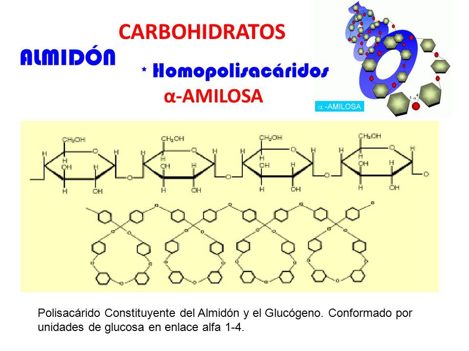 CARBOHIDRATOS ALMIDÓN α-AMILOSA * Homopolisacáridos