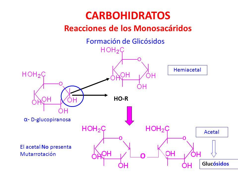 CARBOHIDRATOS Reacciones de los Monosacáridos
