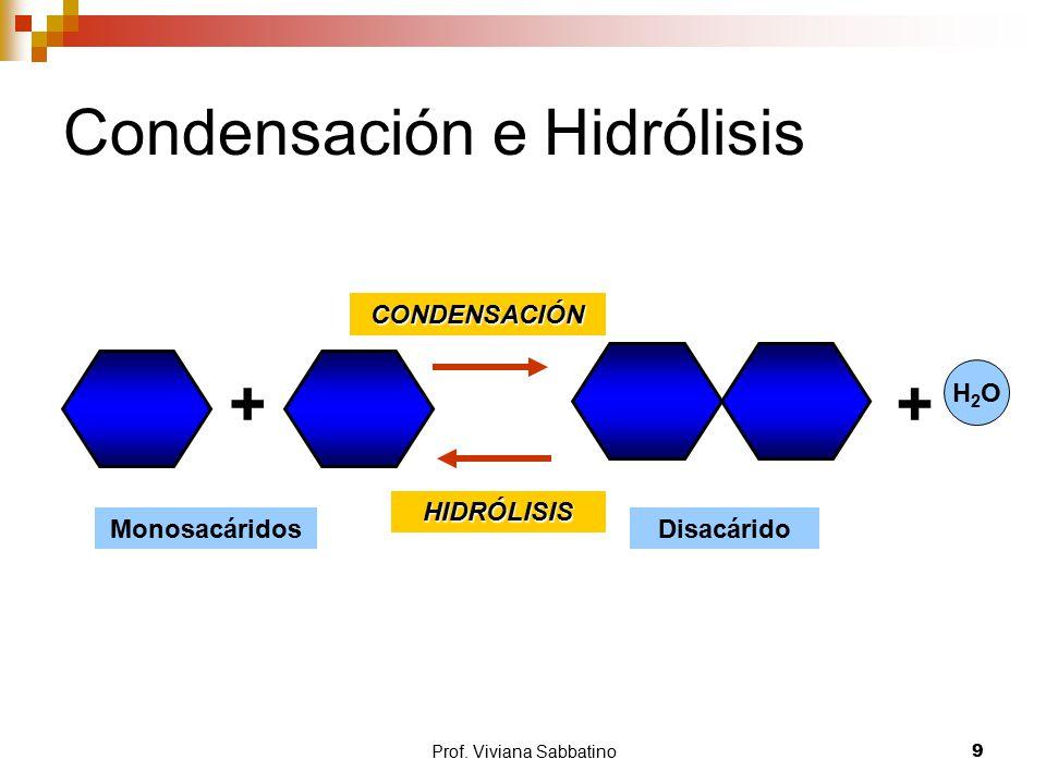 Condensación e Hidrólisis