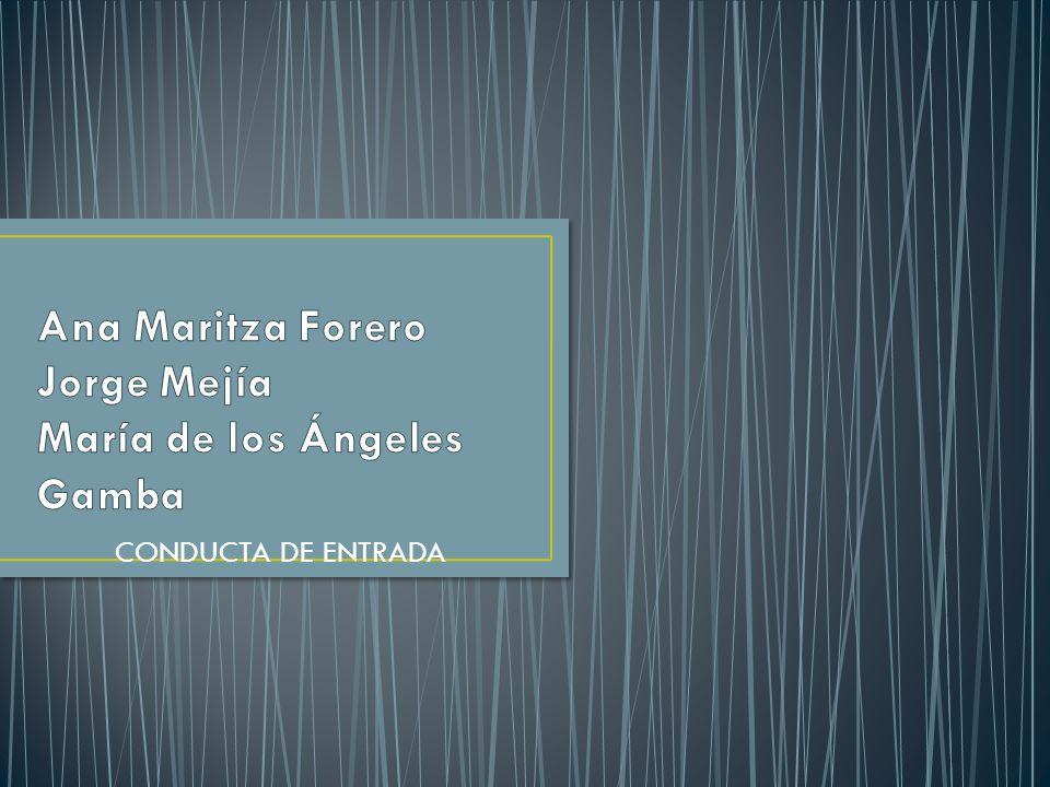 Ana Maritza Forero Jorge Mejía María de los Ángeles Gamba