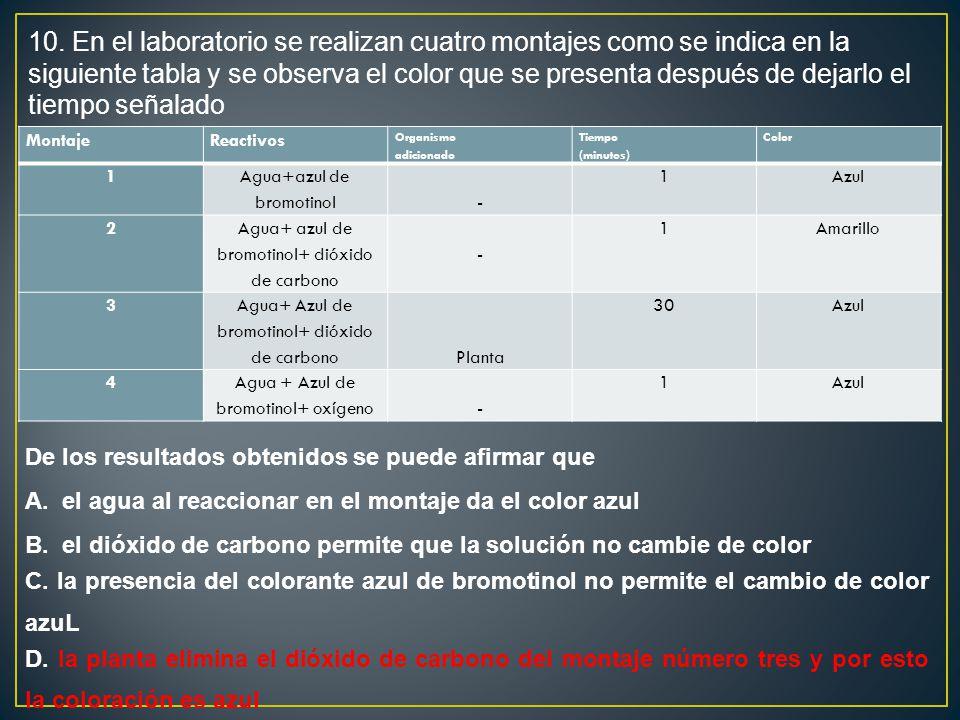 10. En el laboratorio se realizan cuatro montajes como se indica en la siguiente tabla y se observa el color que se presenta después de dejarlo el tiempo señalado
