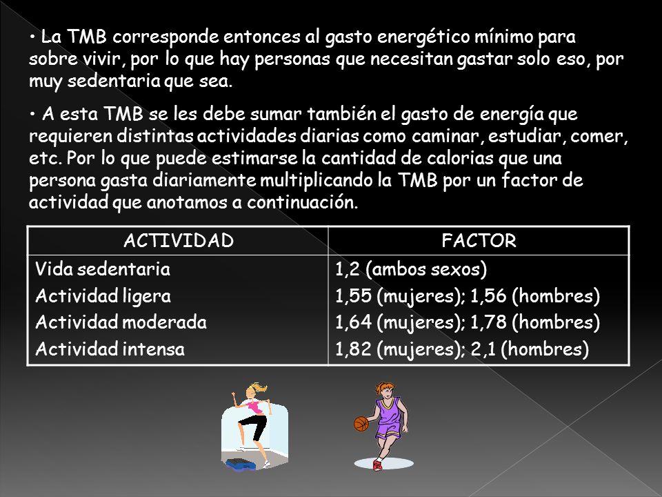 La TMB corresponde entonces al gasto energético mínimo para sobre vivir, por lo que hay personas que necesitan gastar solo eso, por muy sedentaria que sea.