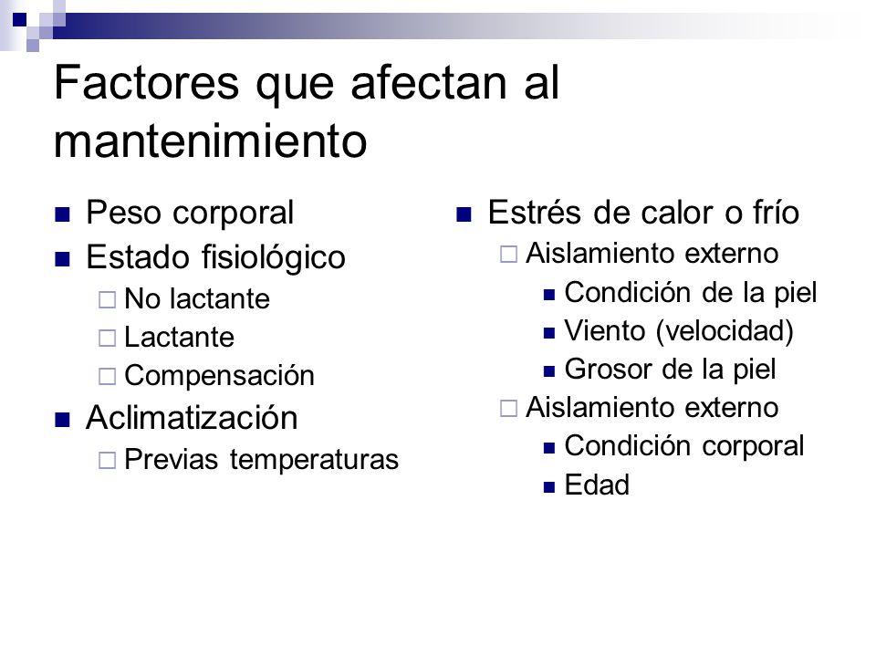 Factores que afectan al mantenimiento