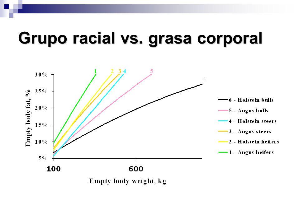 Grupo racial vs. grasa corporal
