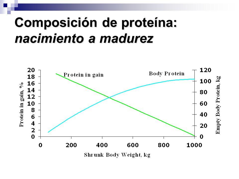 Composición de proteína: nacimiento a madurez