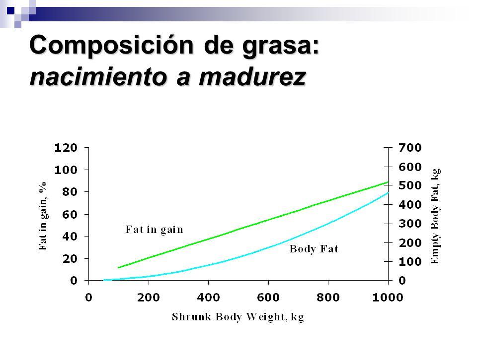 Composición de grasa: nacimiento a madurez