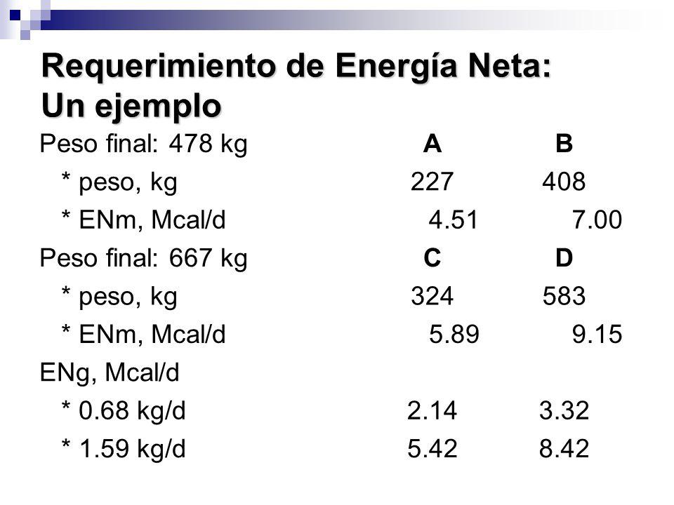 Requerimiento de Energía Neta: Un ejemplo