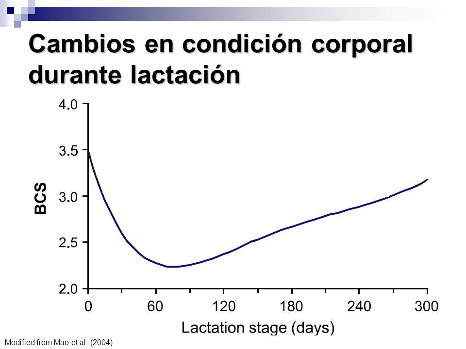 Cambios en condición corporal durante lactación