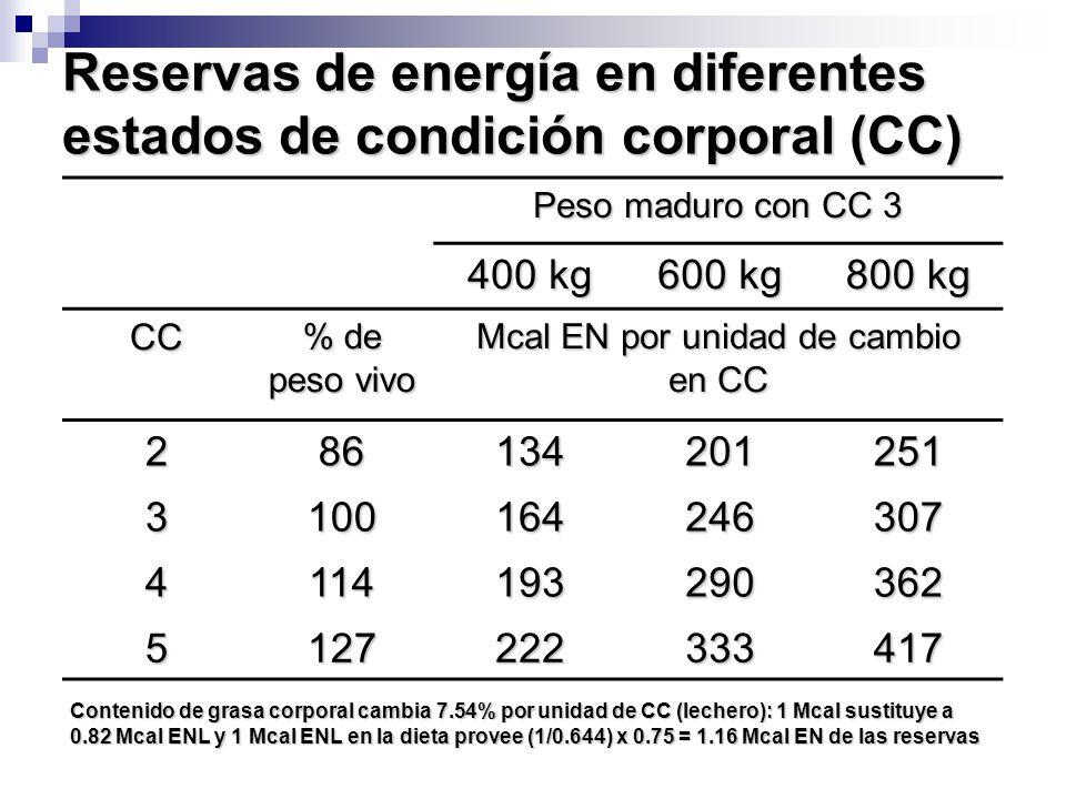Reservas de energía en diferentes estados de condición corporal (CC)