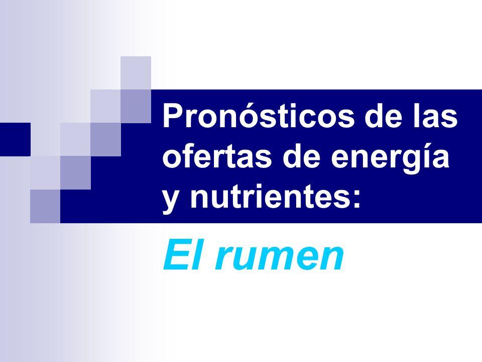 Pronósticos de las ofertas de energía y nutrientes: