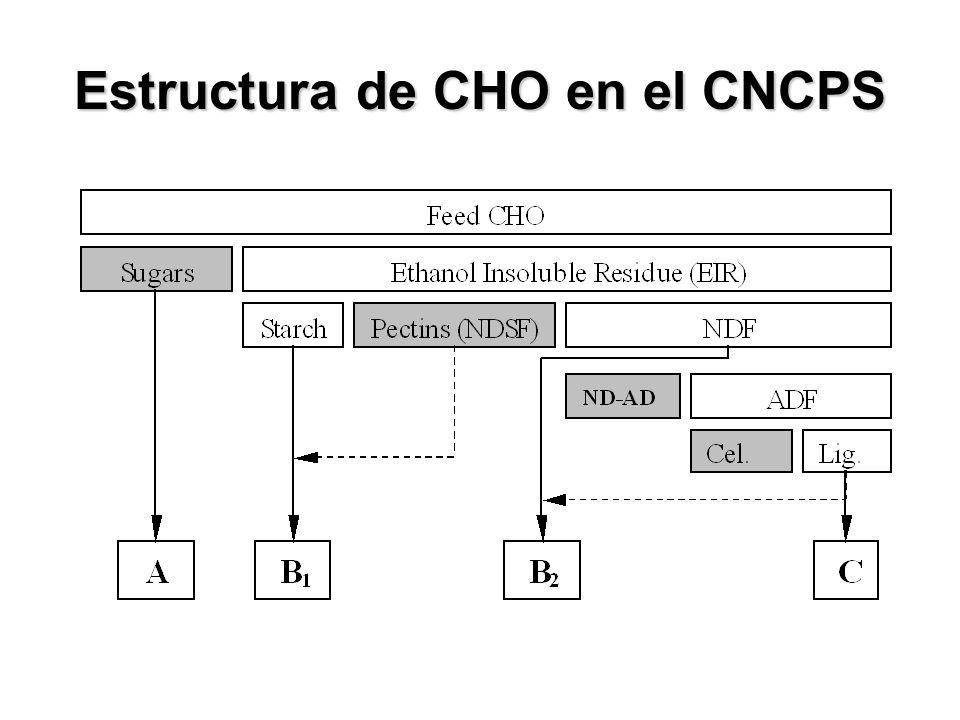 Estructura de CHO en el CNCPS