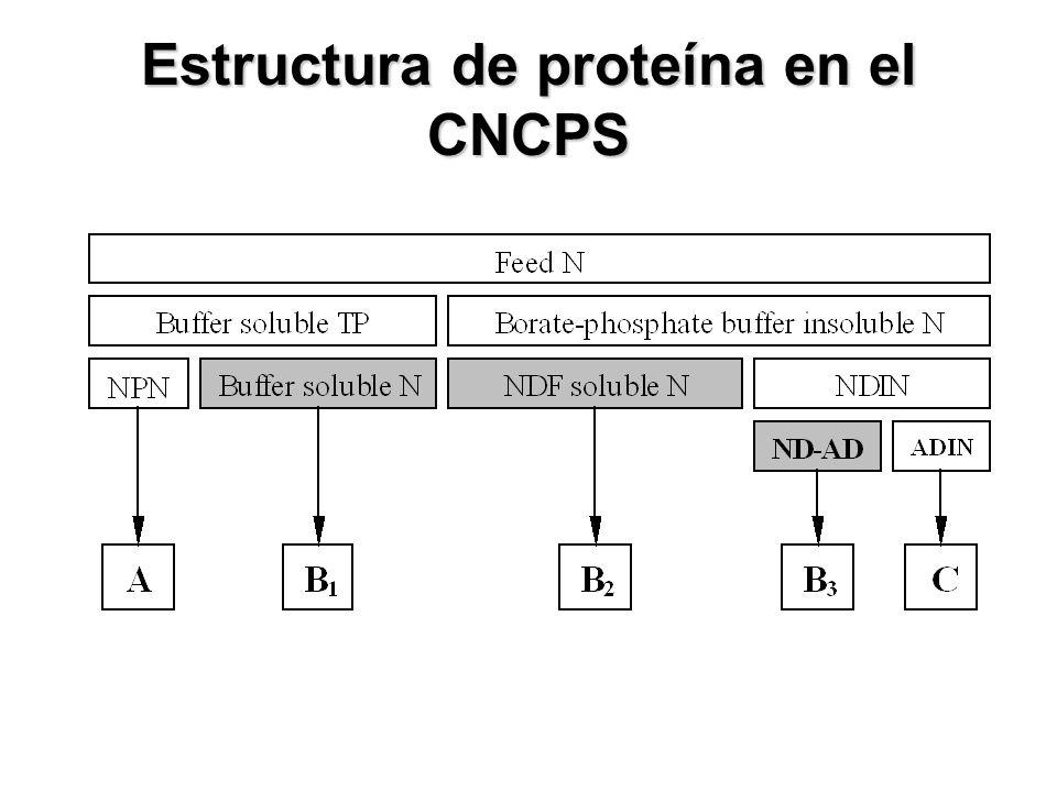 Estructura de proteína en el CNCPS