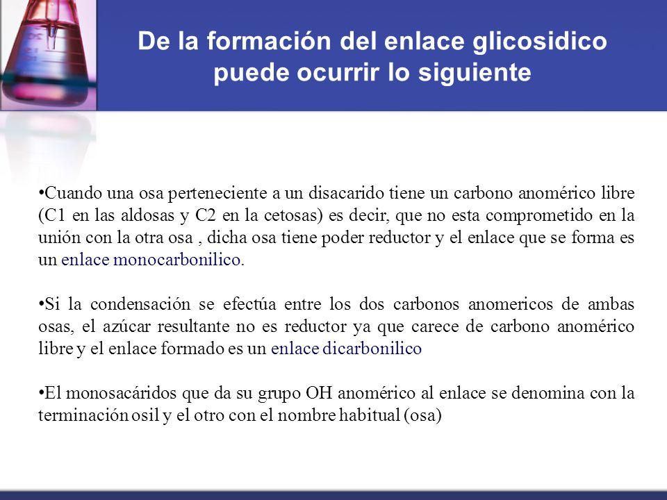 De la formación del enlace glicosidico puede ocurrir lo siguiente