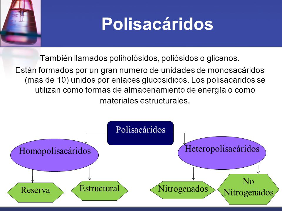 También llamados poliholósidos, poliósidos o glicanos.