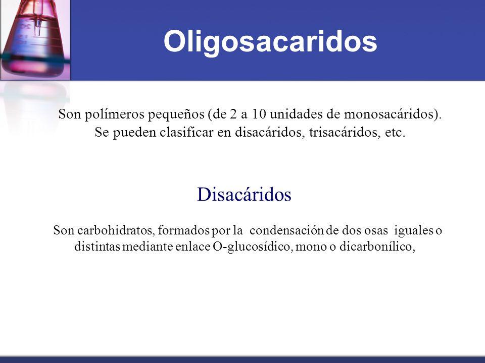 Oligosacaridos Disacáridos