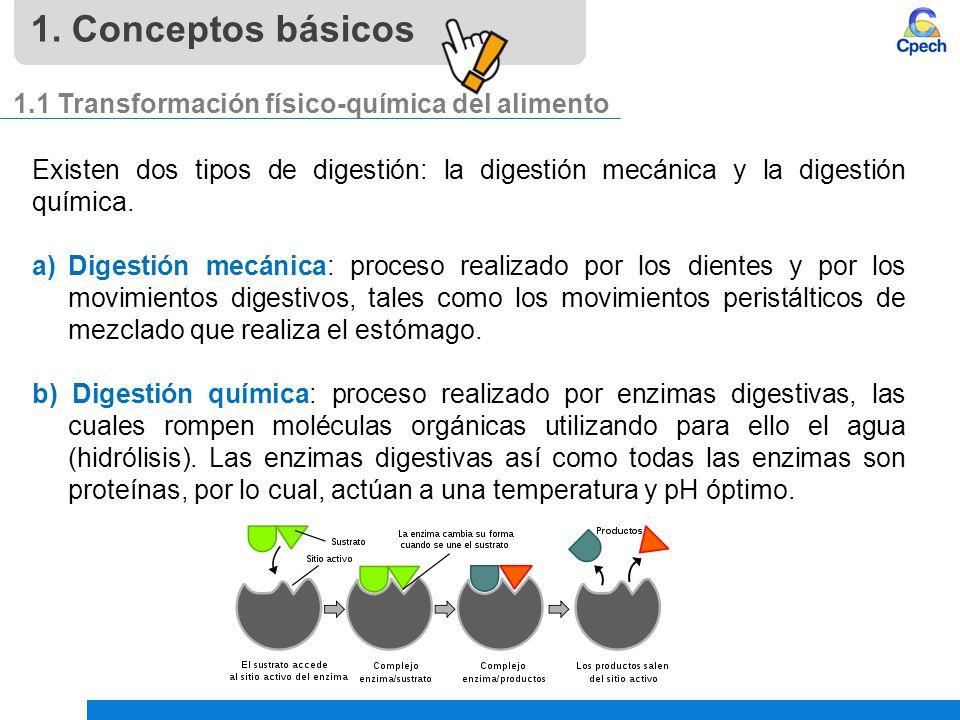 1. Conceptos básicos 1.1 Transformación físico-química del alimento