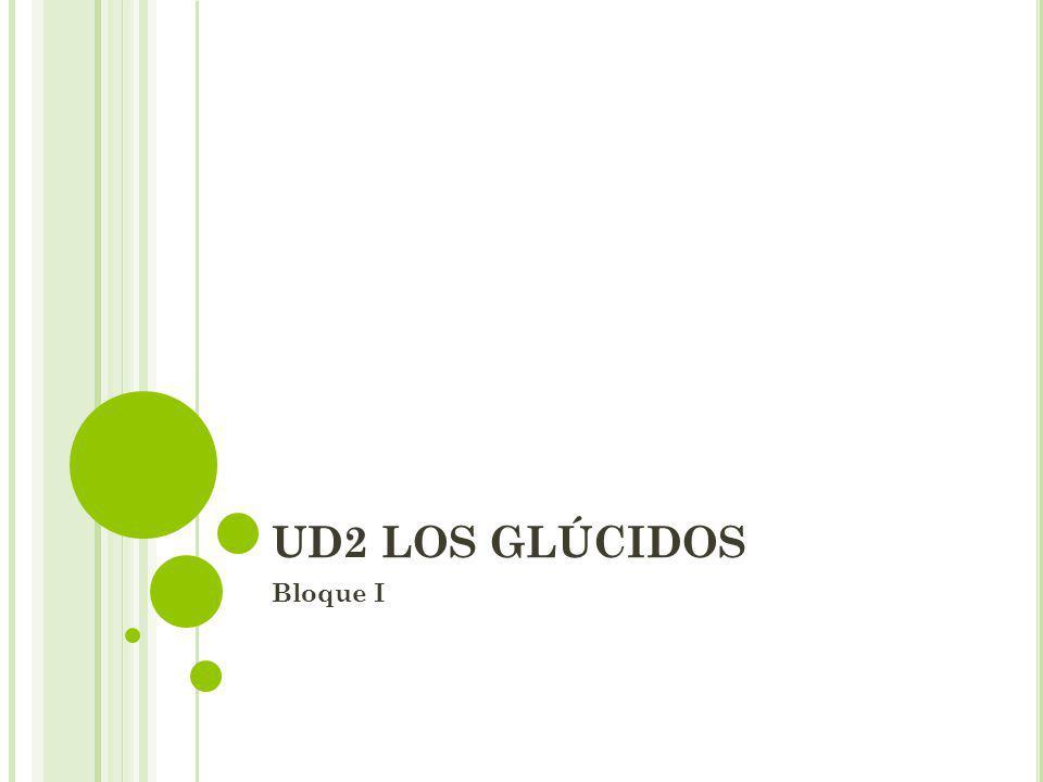 UD2 LOS GLÚCIDOS Bloque I