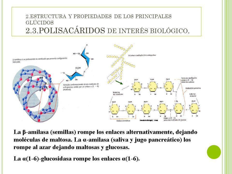 2. ESTRUCTURA Y PROPIEDADES DE LOS PRINCIPALES GLÚCIDOS 2. 3