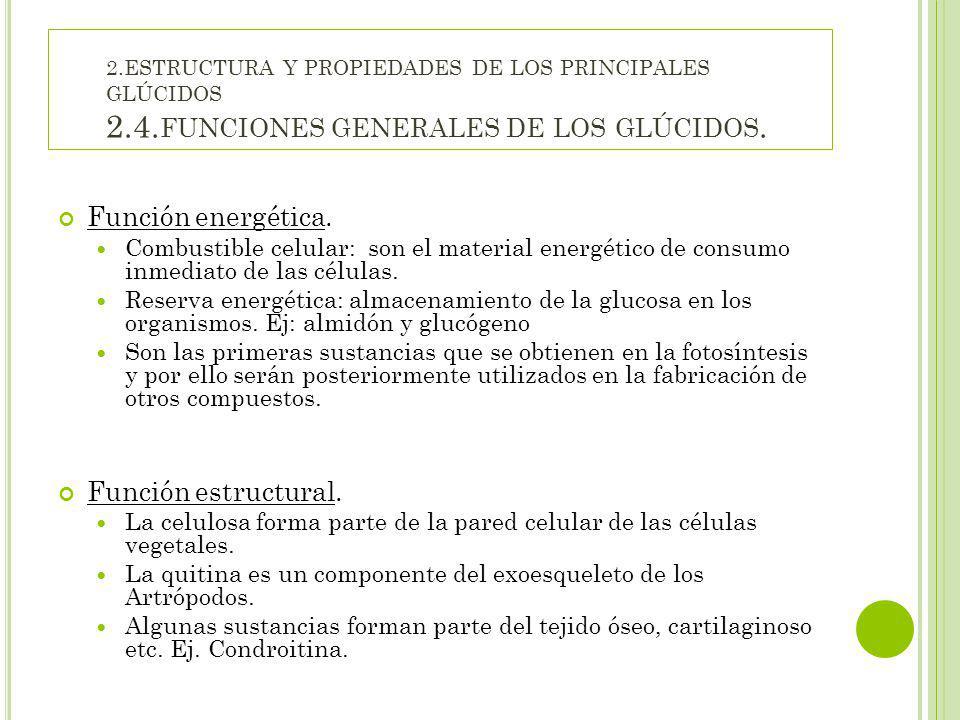 Función energética. Función estructural.