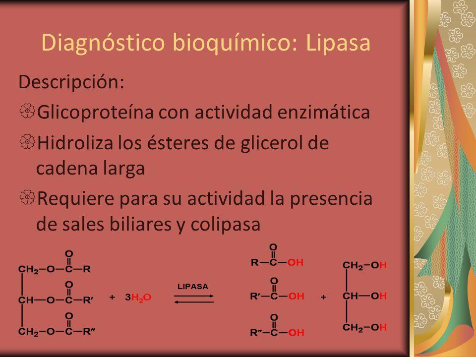 Diagnóstico bioquímico: Lipasa