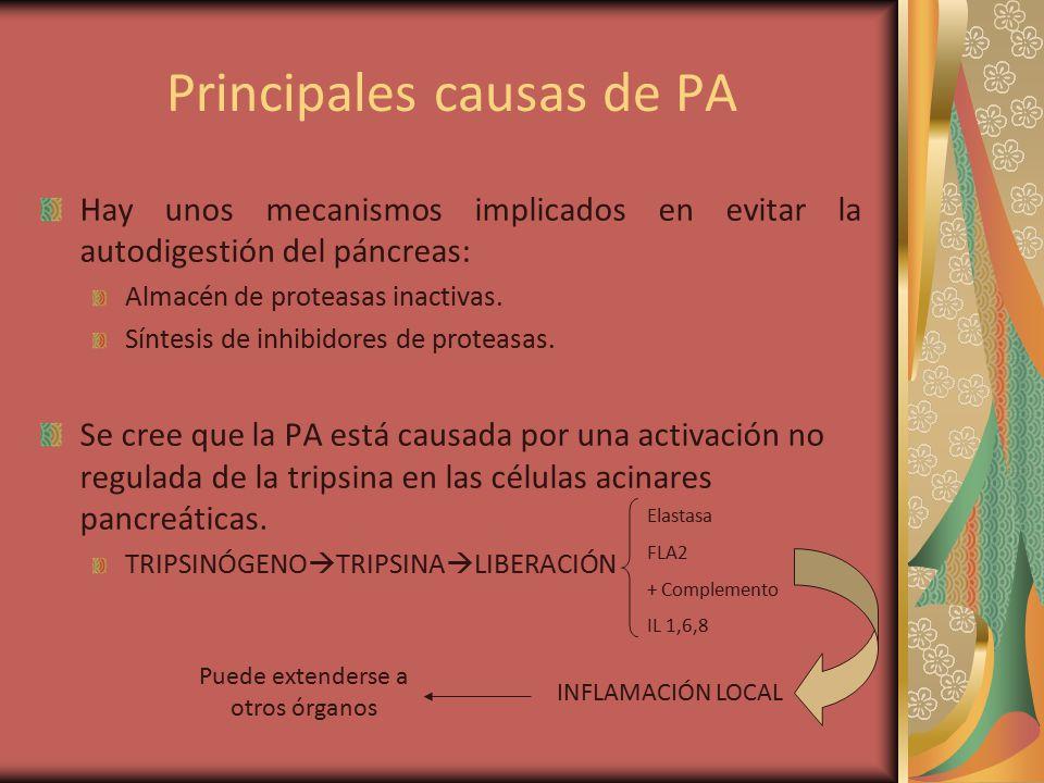 Principales causas de PA