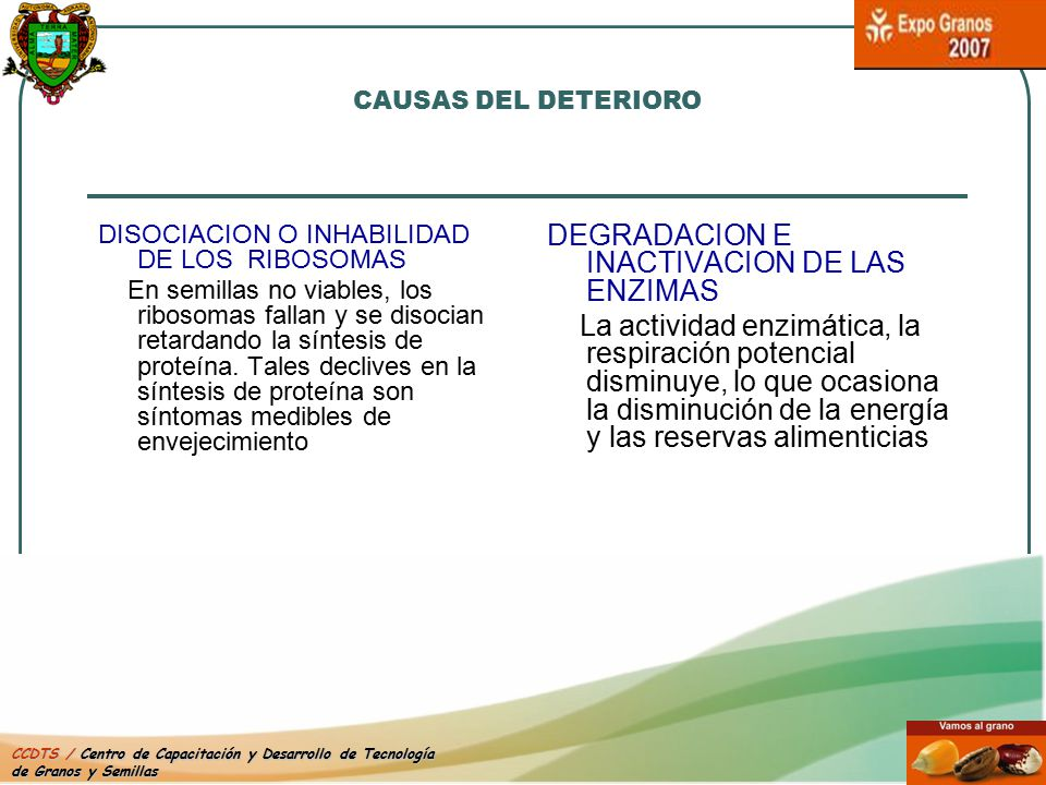 DEGRADACION E INACTIVACION DE LAS ENZIMAS