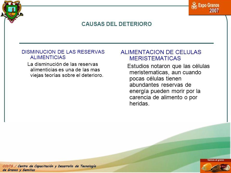 ALIMENTACION DE CELULAS MERISTEMATICAS