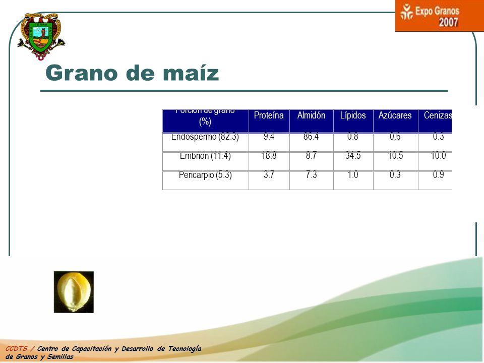 Grano de maíz Porción de grano (%) Proteína Almidón Lípidos Azúcares