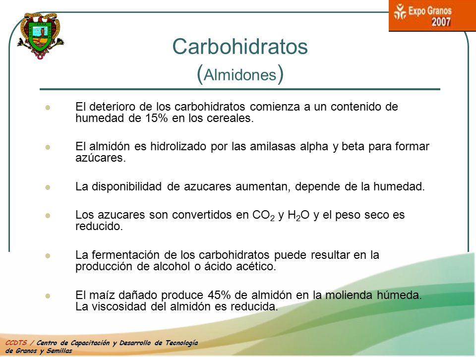 Carbohidratos (Almidones)