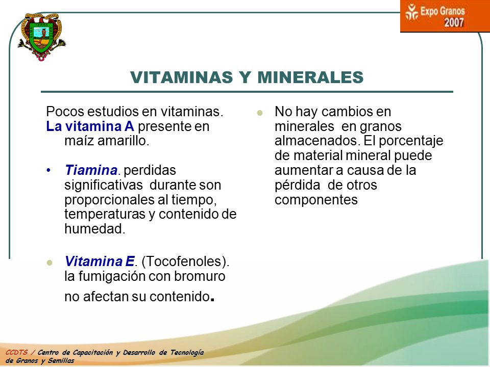VITAMINAS Y MINERALES Pocos estudios en vitaminas.