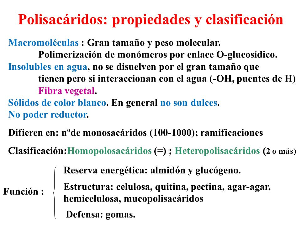 Polisacáridos: propiedades y clasificación