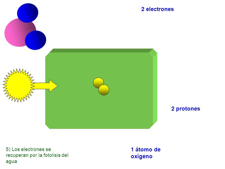 2 electrones 2 protones 1 átomo de oxígeno