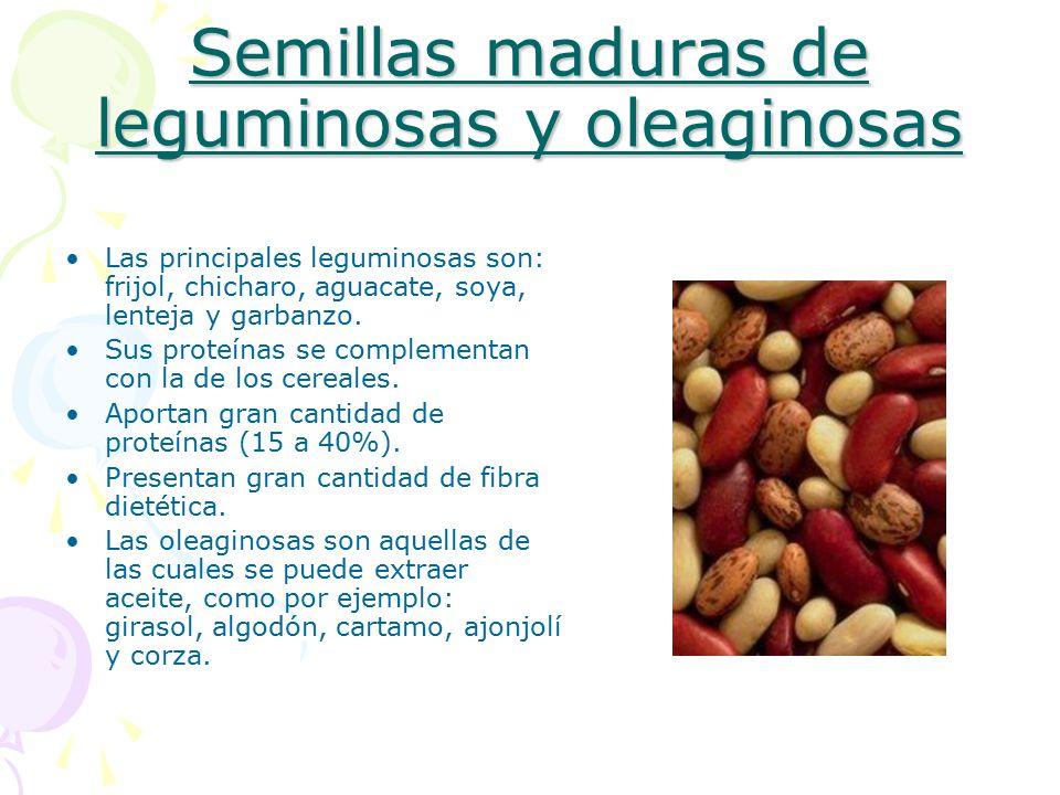 Semillas maduras de leguminosas y oleaginosas