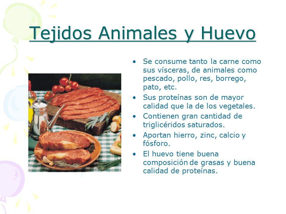 Tejidos Animales y Huevo