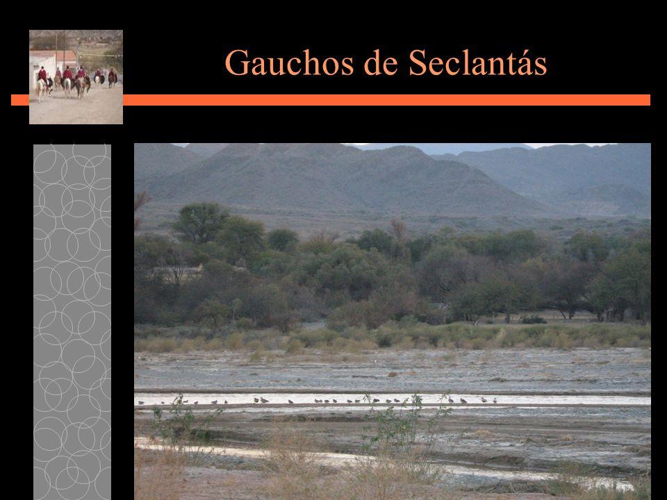 Gauchos de Seclantás Susana Morales
